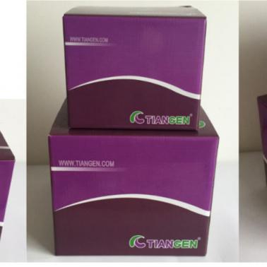 质粒小提试剂盒(dp103)